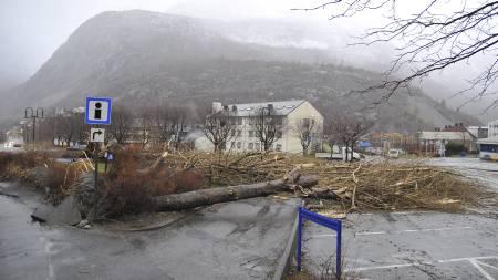 Årdal i Sogn og Fjordane Dagmar (Foto: Frank Optun Smedegaard/Scanpix)