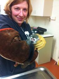 FUNNET: Jill Andrews undersøker Banana Sam etter at han kom trygt hjem til San Francisco Zoo. (Foto: Scanpix)