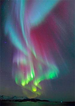 Tromsø natt til mandag. Rødt, blått og grønt nordlys, i ett bilde!  (Foto: Frank Olsen)