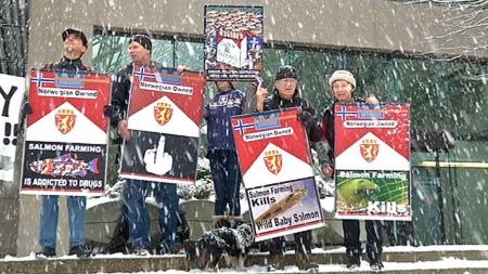 DEMONSTRERER: Det statskontrollerte oppdrettsselskapet Cermaq krever at domstolen må stanse villaksforkjemperens ytringer i Canada. (Foto: TV 2)