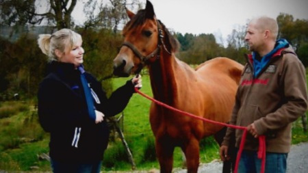hestehandel2   (Foto: Privat)