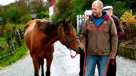 hestehandel3   (Foto: Privat)