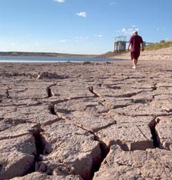 Deler av USA opplevde alvorlig tørke i 2011. Dette bildet ble tatt i Texas 7. august. (Foto: AP Photo/Tony Gutierrez)