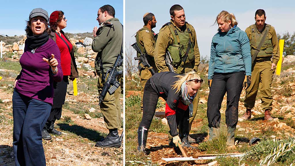 KALTE NORSKE UNGDOMMER NAZISTER: Nadia Matar, lederen for nybyggergruppen  «Women in Green», avbildet idet hun skjeller ut de norske studentene som  nazister. På bildet til høyre har israelske soldater ankommet, og studentene  blir tvunget til å avbryte olivenplantingen. (Foto: Private foto)
