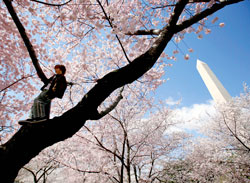 Dette bildet ble tatt 30. mars 2009. (Foto: Reuters)
