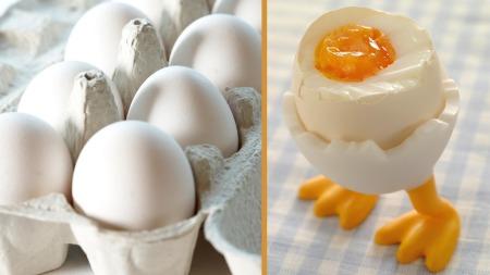 egg (Foto: Synøve Dreyer/ Astrid Hals)