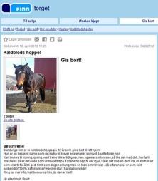 HEST GIS BORT: Folk gir bort mye rart, men hvem skulle tro at man kan plukke med seg en gratis hest på finn.no.  (Foto: Finn.no)