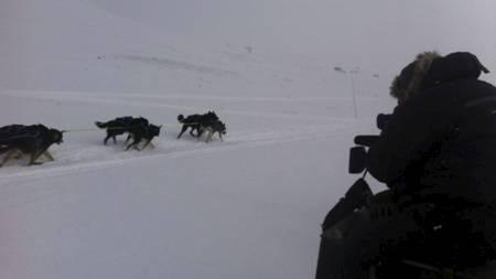 PÅ EKSPEDISJON: Ivar Ekseth er TV 2s fotograf under Fjällräven Polars hundeløp. Her foreviges et forbipasserende hundespann. (Foto: Dag Otto Lauritzen/)