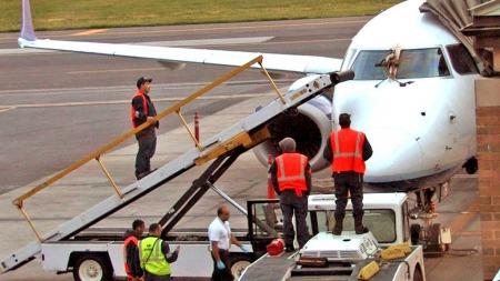 Nødlanding gås fly (Foto: AP)