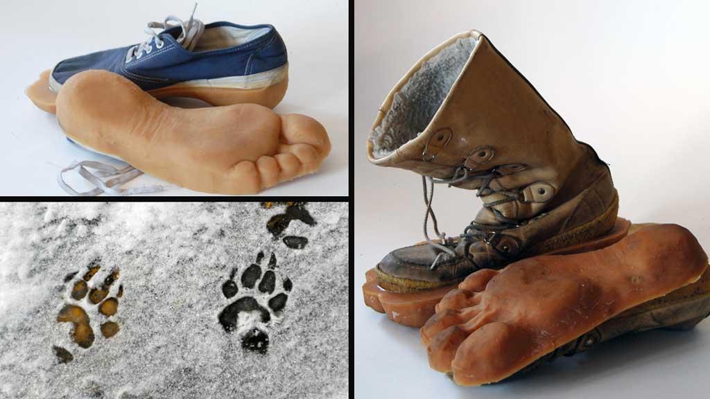 «BIGFOOT»: Kunne du tenke deg par av disse? (Foto: Stella Pictures )