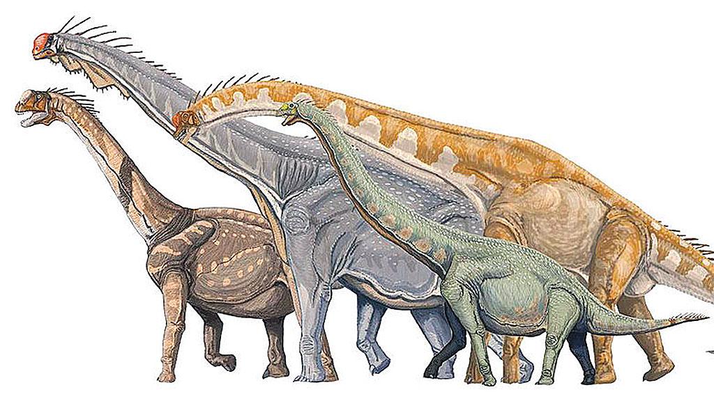 Sauropodene var blandt de største dinosaurene. (Foto: Wikipedia  Commons)