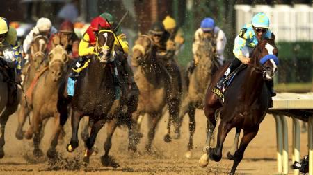 Galopphestene i Kentucky Derby. (Foto: ANDY LYONS/Afp)