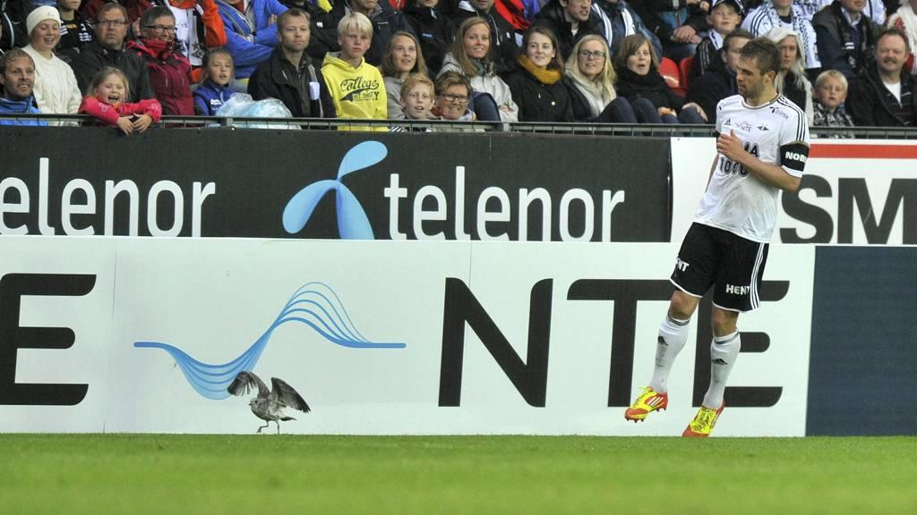 TIL BELGIA? Jim Larsen kan være på vei til belgisk fotball. (Foto: Alley, Ned/NTB scanpix)
