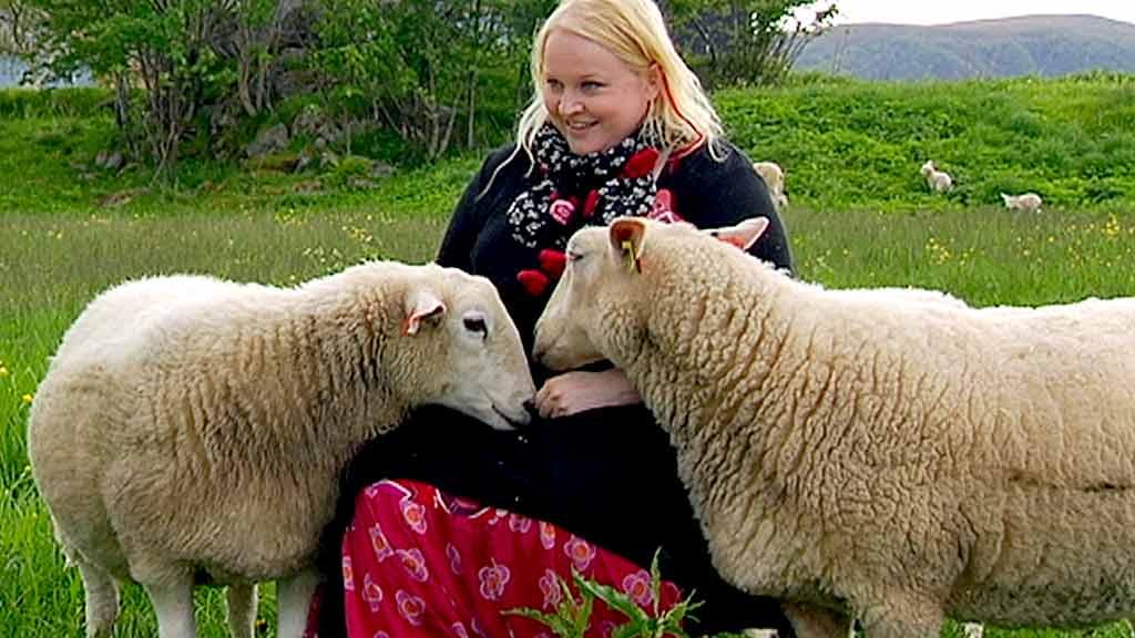 KOSESAUER:  Siv Johansens sauer får leve lenge og vel. De får kjærlighet i stedet for et møte med slakteriet. (Foto: Ole H. Sommarset/TV 2)