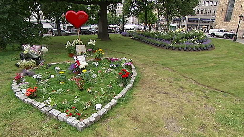 rosehage oslo domkirke (Foto: TV 2)