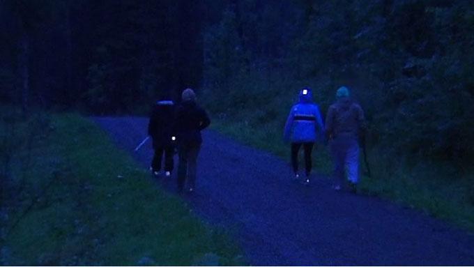 Rundt 500 frivillige har gjennom mandagen deltatt i letingen etter savnede Sigrid Giskegjerde Schjetne (16). Her fra området nordøst for Skullerud, hvor politiet sperret av et skogsområde noen timer mandag kveld. (Foto: Benjamin Bakken/TV 2)