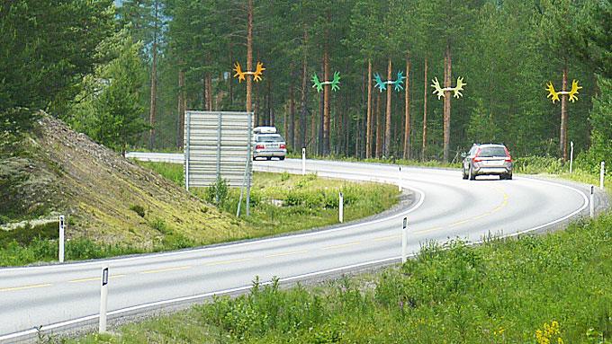Mange har helt sikkert stusset over hva i alle verden disse gevirene gjør på trærne i Østerdalen - og det er akkurat det som er meningen. (Foto: Statens vegvesen)