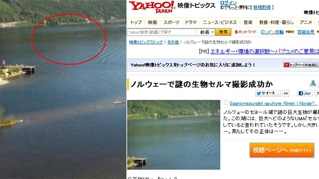 yahoo og sjøorm (Foto: Privat/skjermdump)