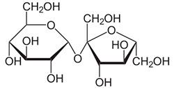 Slik ser sukrose ut, molekylet er satt sammen av en ring glukose og en ring fruktose. (Foto: Wikimedia Commons)