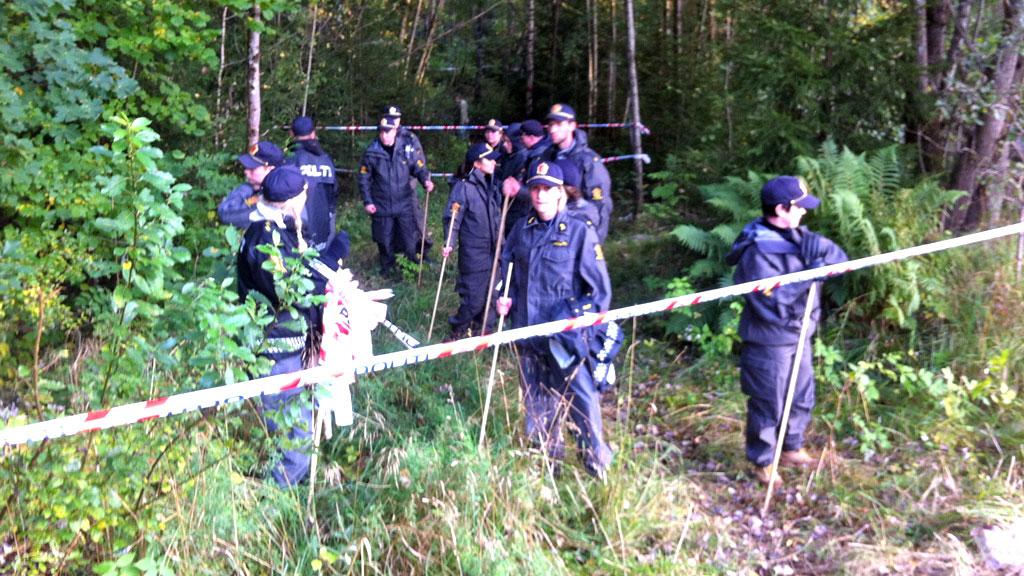NYE SØK: Politifolk med søkestenger finkjemmer skogen hvor Sigrid ble funnet drept.  (Foto: Per Magne Dalen / TV 2)