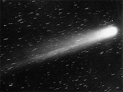 Halleys komet fototgrafert i 1910. (Foto: Wikimedia Commons)