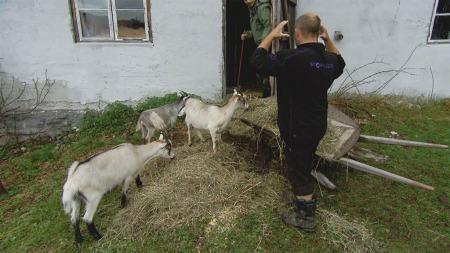 dag-egil-geiter-farmen
