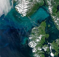 Satellittbildet ble tatt 27. juni 2003 for å vise algeoppblomstringen   i Skagerrak. På himmelen over ser du tydelig kondensstriper etter fly.   (Foto: NASA)