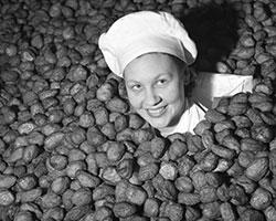 I 1954 fikk Stabburet i oppdrag å lage mat til en militærøvelse der 25.000 soldater skulle i felten. Menyen var kjøttkaker, poteter og brun saus. (Foto: Sv. A. Børretzen / Aktuell / Scanpix)