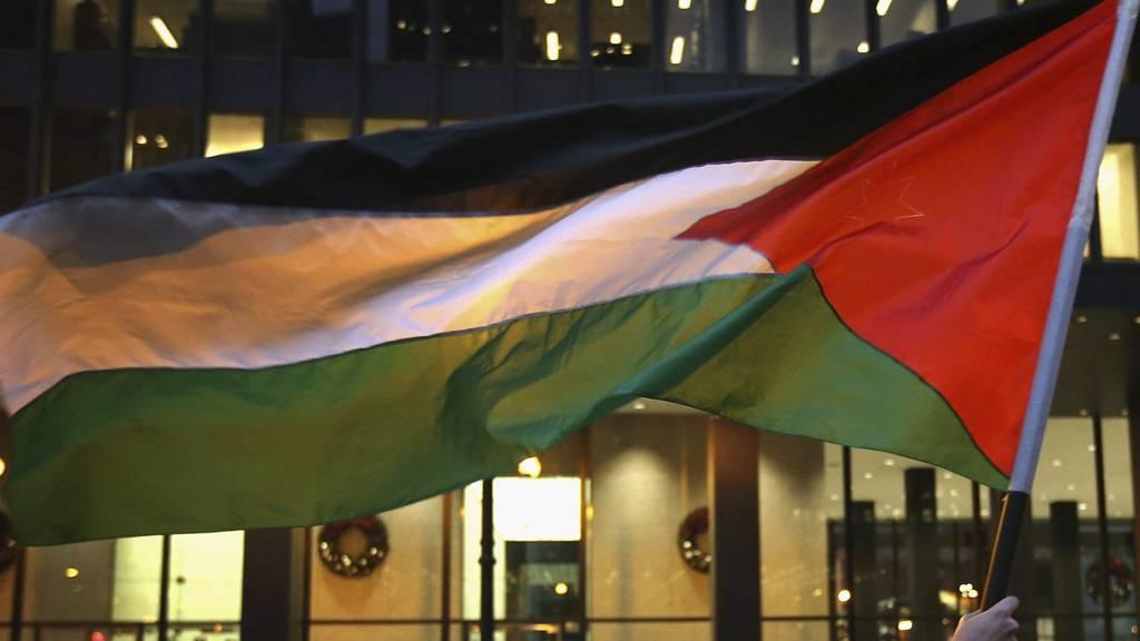 OBSERVATØRSTAT: Norge sier ja til å gi Palestine status som observatørstat i FN. (Foto: SCOTT OLSON/Afp)
