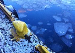 Den første isen som legger seg på sjøen er ofte ferskvann, som flyter oppå det salte vannet under. Sjøvann fryser først ved -2 grader. (Foto: Ronald Toppe)