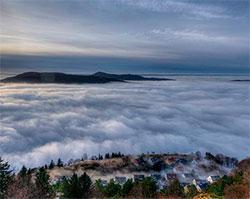 Bergen var innhyllet i tåke 8. januar. (Foto: Irene Sletvik)