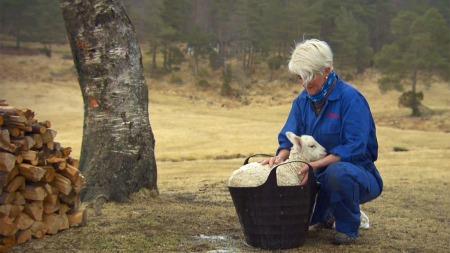 ENERGISK: Birte elsker jobben sin, men kunne tenkt seg litt flere fridager - og noen å dele dem med.  (Foto: TV 2)