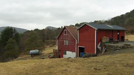 SENTRUMSNÆRT: Birtes gård ligger i Fyllngsdalen i Bergen, med kort vei til Bergen sentrum, og bare et steinkast unna huset der hun bor.  (Foto: TV 2)