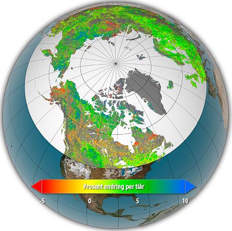 Kartet viser de endringene som er skjedd med vegetasjonen nord   for 40 grader siden 1982. Rødt viser mindre vegetasjon, grønt og blått   mer vegetasjon. (Foto: Nature Climate Change)