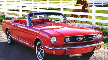 Det var trolig omtrent slik Mustang-livet var tiltenkt. I stedet ble det 30 år på en mørk låve. Illustrasjonsbilde.  (Foto: Ford)