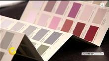 Årets farger: Slik velger du riktig farge til hjemmet