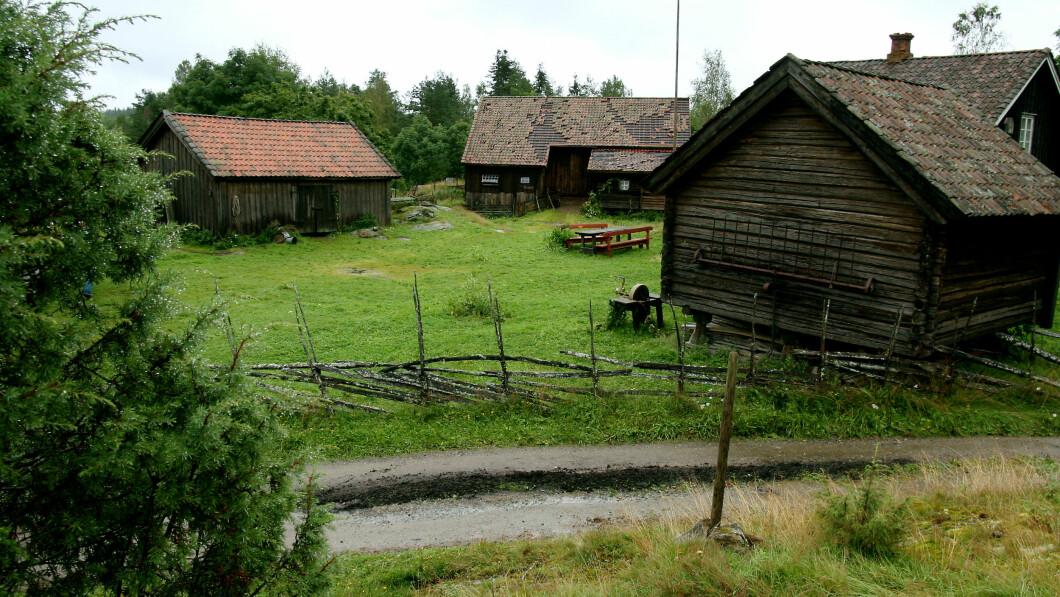 GJENSYN: Gården ble også brukt i 2008, i den femte sesongen av Farmen.