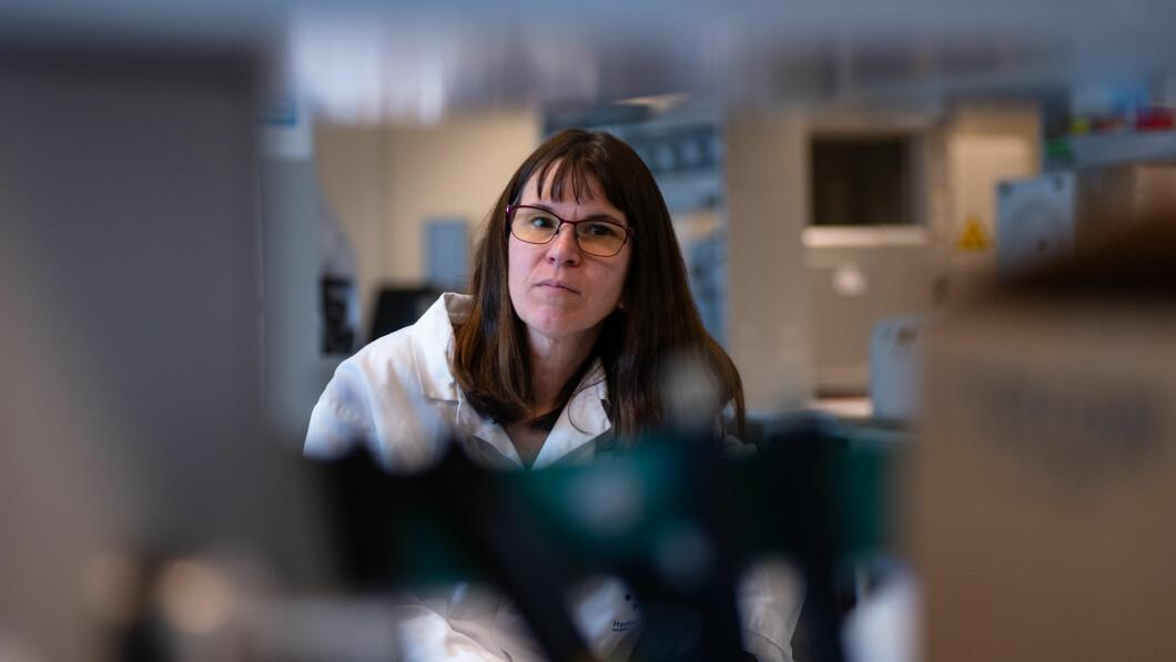 Lykke til vaksineinnretningen: Rebecca Cox, leder for influensasenteret i Hockland, er en av Norges ledende antiviruseksperter.