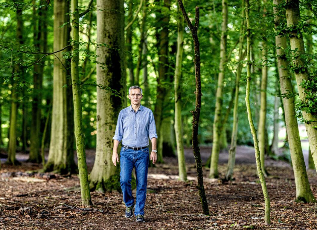KLIMAFOKUS: Natos generalsekretær Jens Stoltenberg fotografert på skogstur i Brussel.