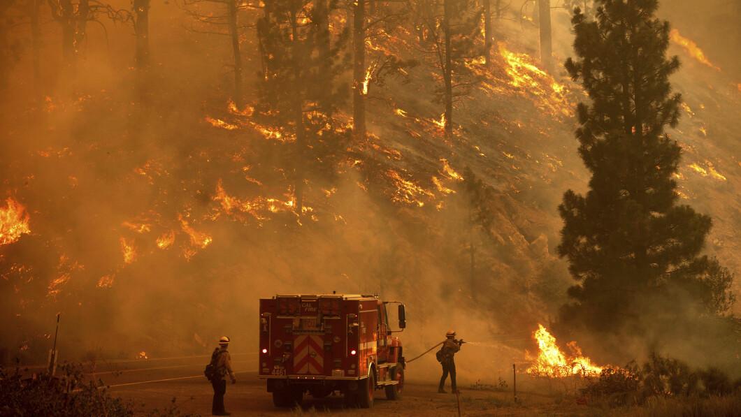 Opwarming van de aarde: Veel onderzoekers suggereren dat door de mens veroorzaakte klimaatverandering heeft geleid tot meer hittegolven en bosbranden.  Foto: AP Photo/Noah Berger