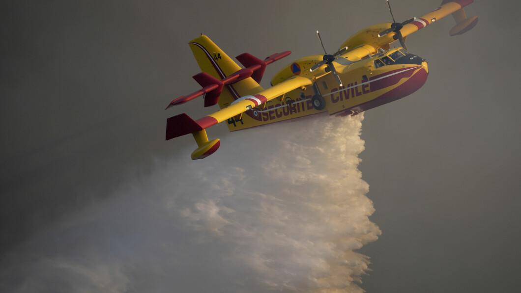 De open haard: Op de derde dag vecht een brandweer om een grote bosbrand bij Saint-Tropez aan de Franse Rivièra onder controle te krijgen.