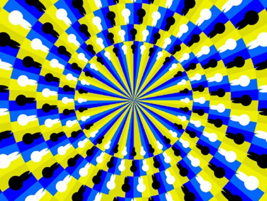 анимация статичной фотографии называется раздражение