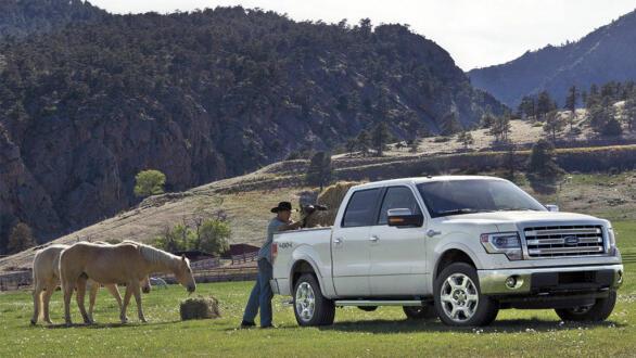 Fords F-serie er veldig populær på den amerikanske landsbygda og er verdens nest mest solgte bilmodell gjennom alle tider.